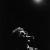 Ian Dury byn_b-©José Antonio Sancho